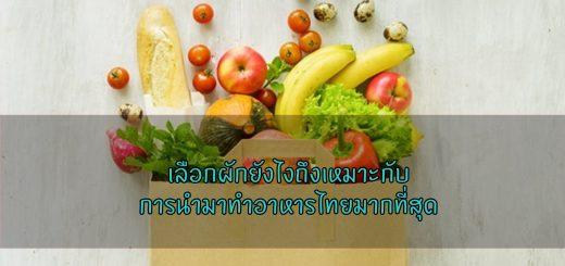 เลือกผักยังไงถึงเหมาะกับการนำมาทำอาหารไทยมากที่สุดเบย์ จีลา ข่าวสาร ความรู้ สุขภาพ ครอบครัว กีฬา ออกกำลังกาย