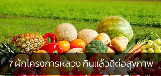 7 ผักโครงการหลวง กินแล้วดีต่อสุขภาพ ข่าวสาร ความรู้ สุขภาพ ครอบครัว กีฬา ออกกำลังกาย ผักโครงการหลวง