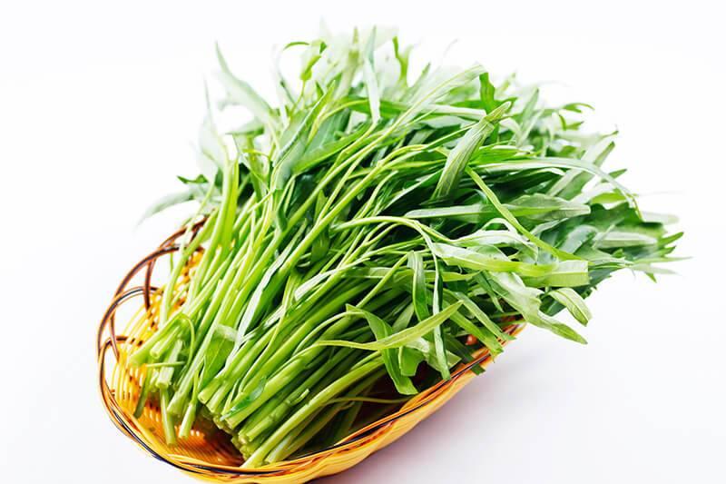 3 วิธีการปลูกผักบุ้งง่าย ๆ ไม่ต้องมีสวนก็ทำได้ ข่าวสาร ความรู้ สุขภาพ ครอบครัว กีฬา ออกกำลังกาย วิธีปลูกผักบุ้ง