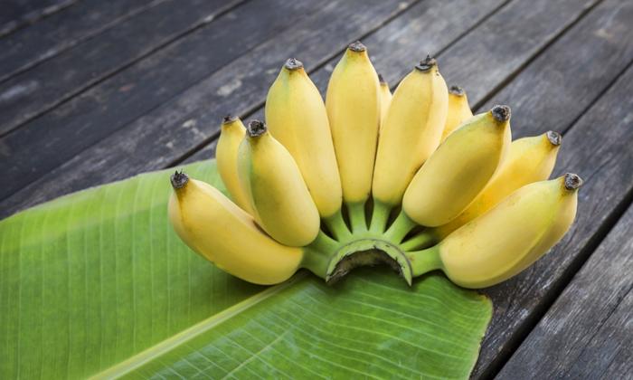 กล้วยน้ำว้า รักษาโรค บรรเทาป่วย เสริมความสวยก็ได้ ข่าวสาร ความรู้ สุขภาพ ครอบครัว กีฬา ออกกำลังกาย ประโยชน์กล้วยน้ำว้า
