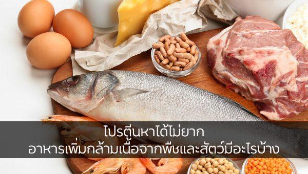 โปรตีนหาได้ไม่ยาก อาหารเพิ่มกล้ามเนื้อจากพืชและสัตว์มีอะไรบ้าง ข่าวสาร ความรู้ สุขภาพ ครอบครัว กีฬา ออกกำลังกาย อาหารโปรตีน