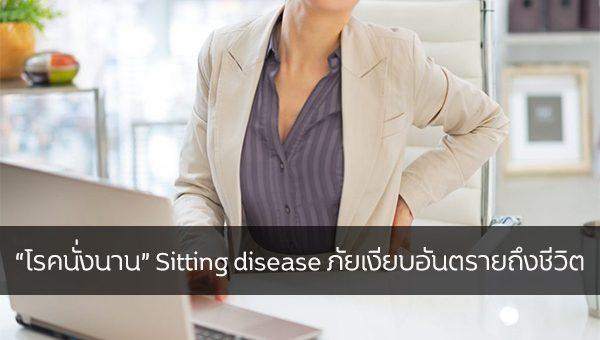 """""""โรคนั่งนาน"""" Sitting Disease ภัยเงียบอันตรายถึงชีวิต ข่าวสาร ความรู้ สุขภาพ ครอบครัว กีฬา ออกกำลังกาย โรคนั่งนาน"""