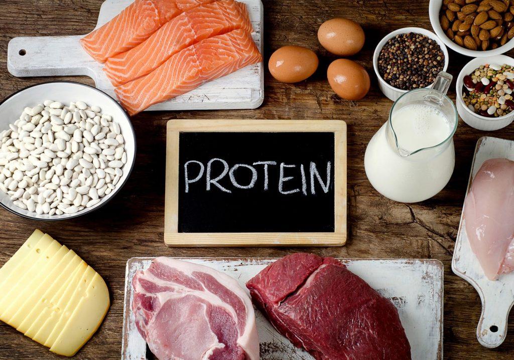 ทำไมโปรตีนสำคัญต่อการลดน้ำหนัก *การลดน้ำหนัก* ข่าวสาร ความรู้ สุขภาพ ครอบครัว กีฬา ออกกำลังกาย เทคนิคลดน้ำหนัก โปรตีนสำหรับการลดน้ำหนัก